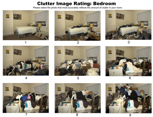 Hoarding-Clutter Image Rating Scale (CIRS) by: The Department of Health